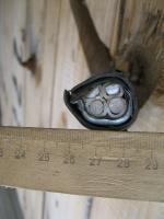 Фото конструкции бронированного кабеля АВБбШв 4х25