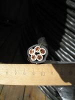 Фотография сечения кабеля ВВГнг-LS 5х16