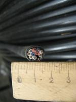 Фотография сечения контрольного экранированного кабеля КВВГЭнг 10х1.5 в оболочке и изоляции пониженной горючести