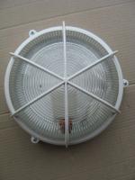 Фото пылезащищённого светильника НББ 64-100 Селена 32 выпуска Ватра