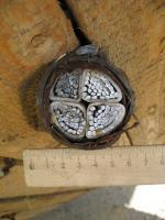 Фотография силового бронированного негорючего кабеля АВБбШвнг 4х185 для прокладки в земле