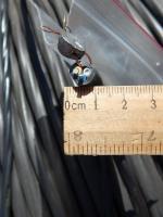 Фотография сечения силового алюминиевого кабеля АВВГнг 3х2,5 для стационарной групповой прокладки